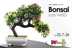ARTECASA BONSAI 23X24
